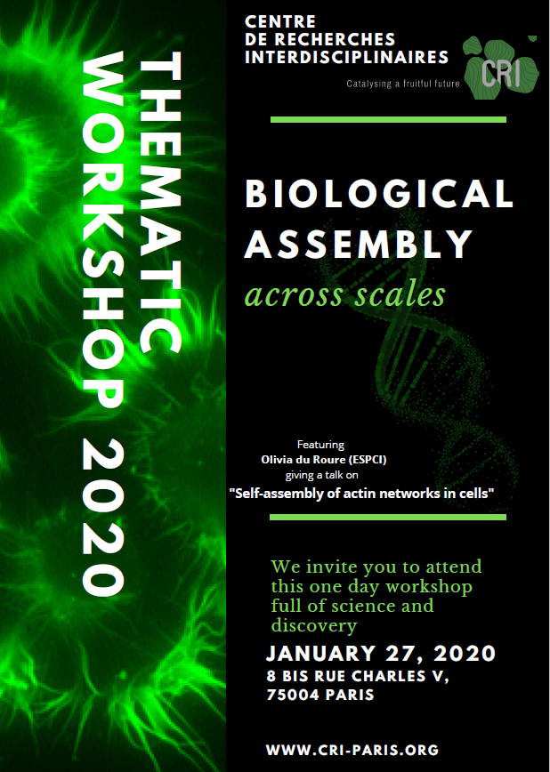 Thematic Workshop: Biological assembly across scales