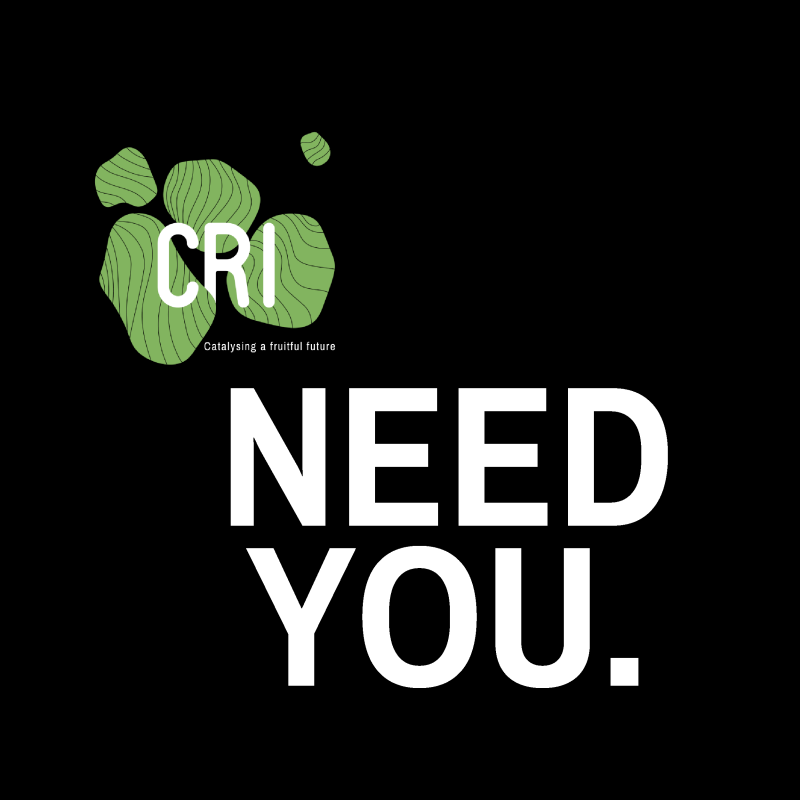 Call for Volunteers ! CRI Campus Inauguration