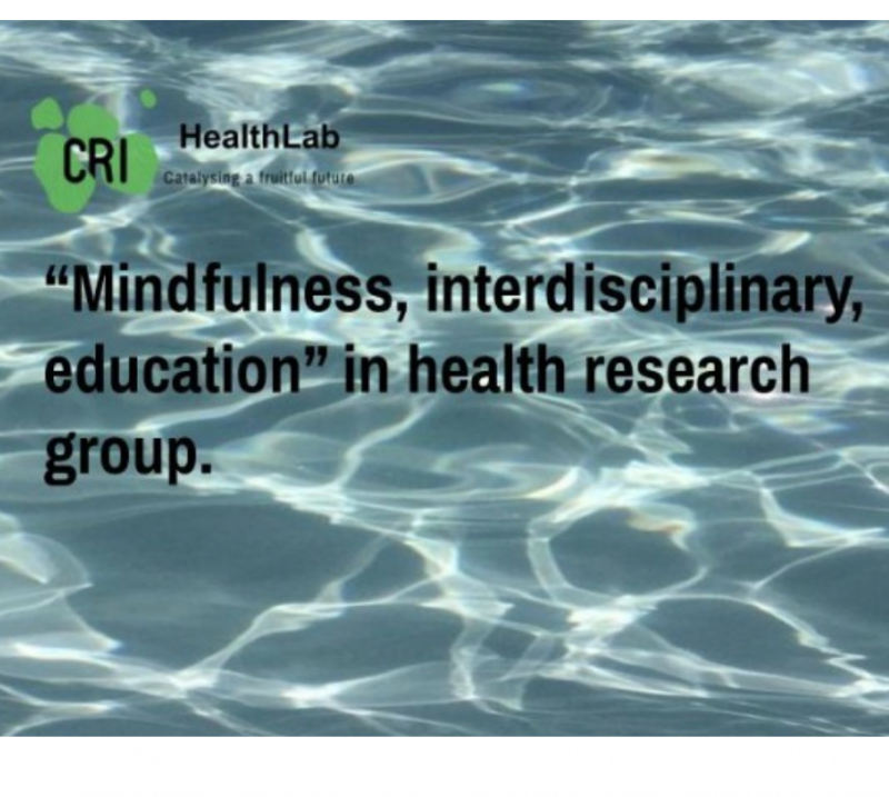 Mindfulness, interdisciplinary, education in health research group 2