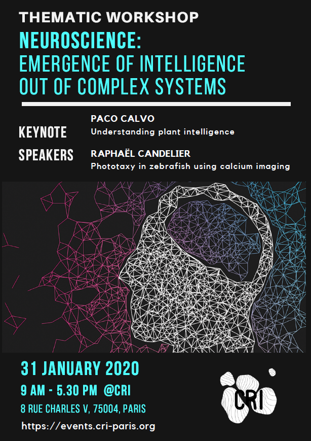 Thematic Workshop: Neuroscience – emergence of intelligence out of complex systems